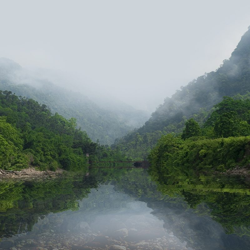 A mountainous forested jungle region in Bangladesh.